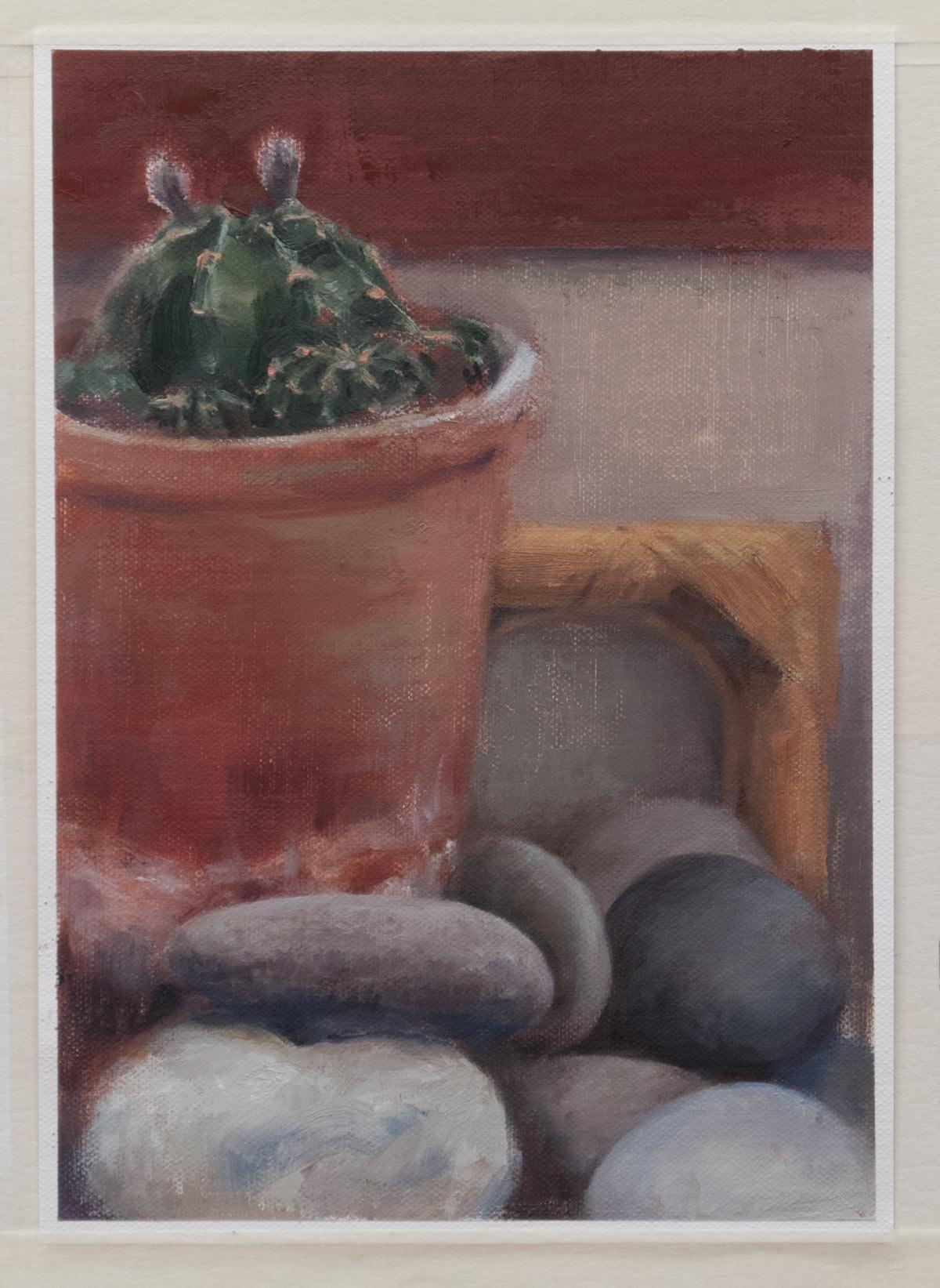 cactus-stones-1200_0804