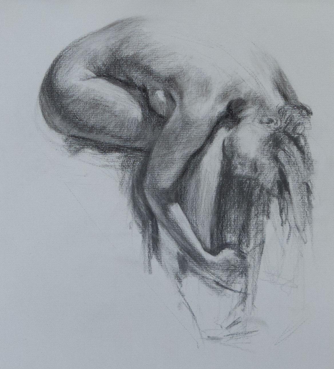 Vine charcoal sketchtesting