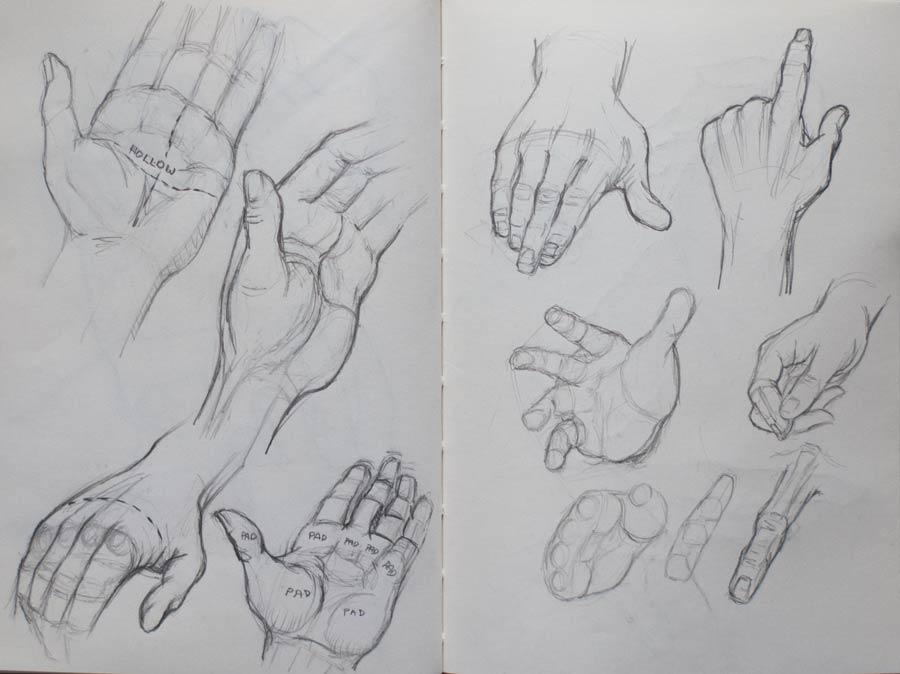 hands-900_9018