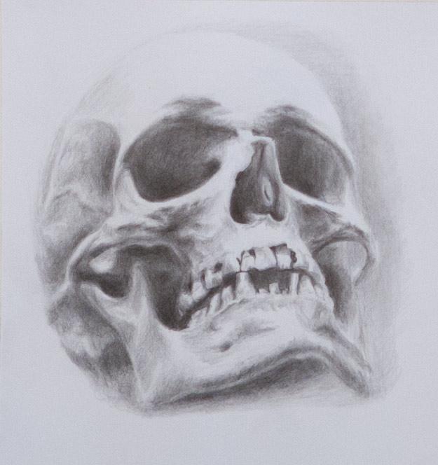 skull_9909-3